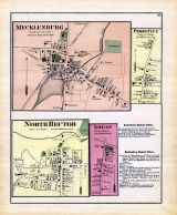 Mecklenburg, Perry City, North Hector, Logan, Schuyler County 1874